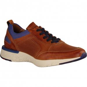Bandos Whisky/Royal (braun) - Sneaker