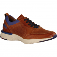 Bandos Whisky/Royal (braun) - Sneaker