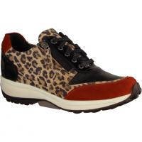 Wembley Leopard Combi (braun) - sportlicher Schnürschuh